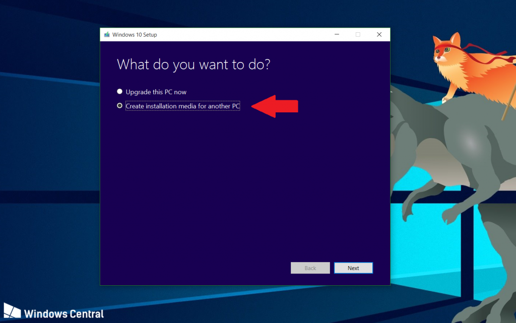Windows-10-setup-what-do-you-want-to-do